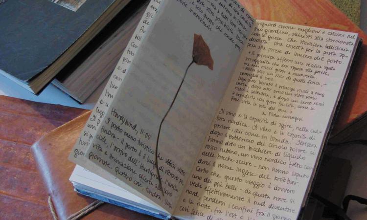 Perché tenere un diario è importante