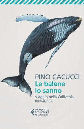 Le balene lo sanno – Pino Cacucci